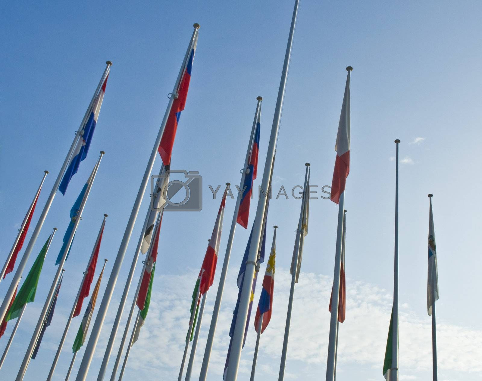 Royalty free image of Flags by carla720
