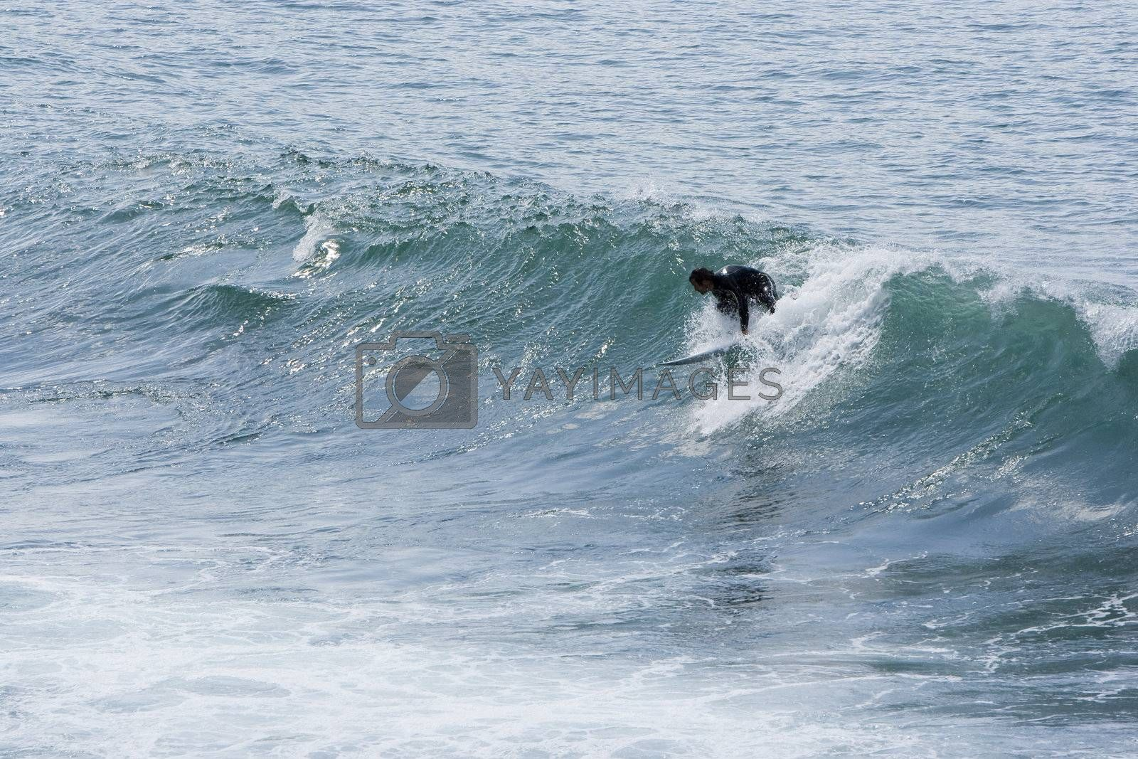 image of people practicing surf in the beach