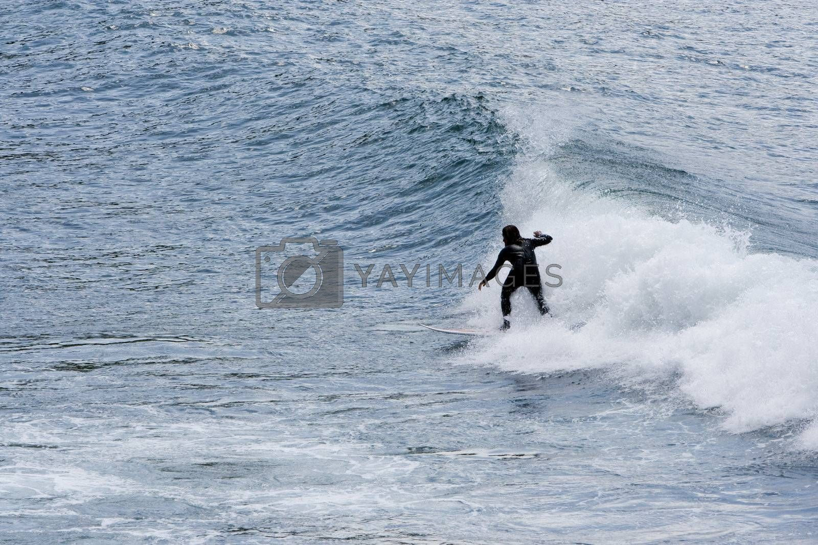 summer sport surf by Trebuchet