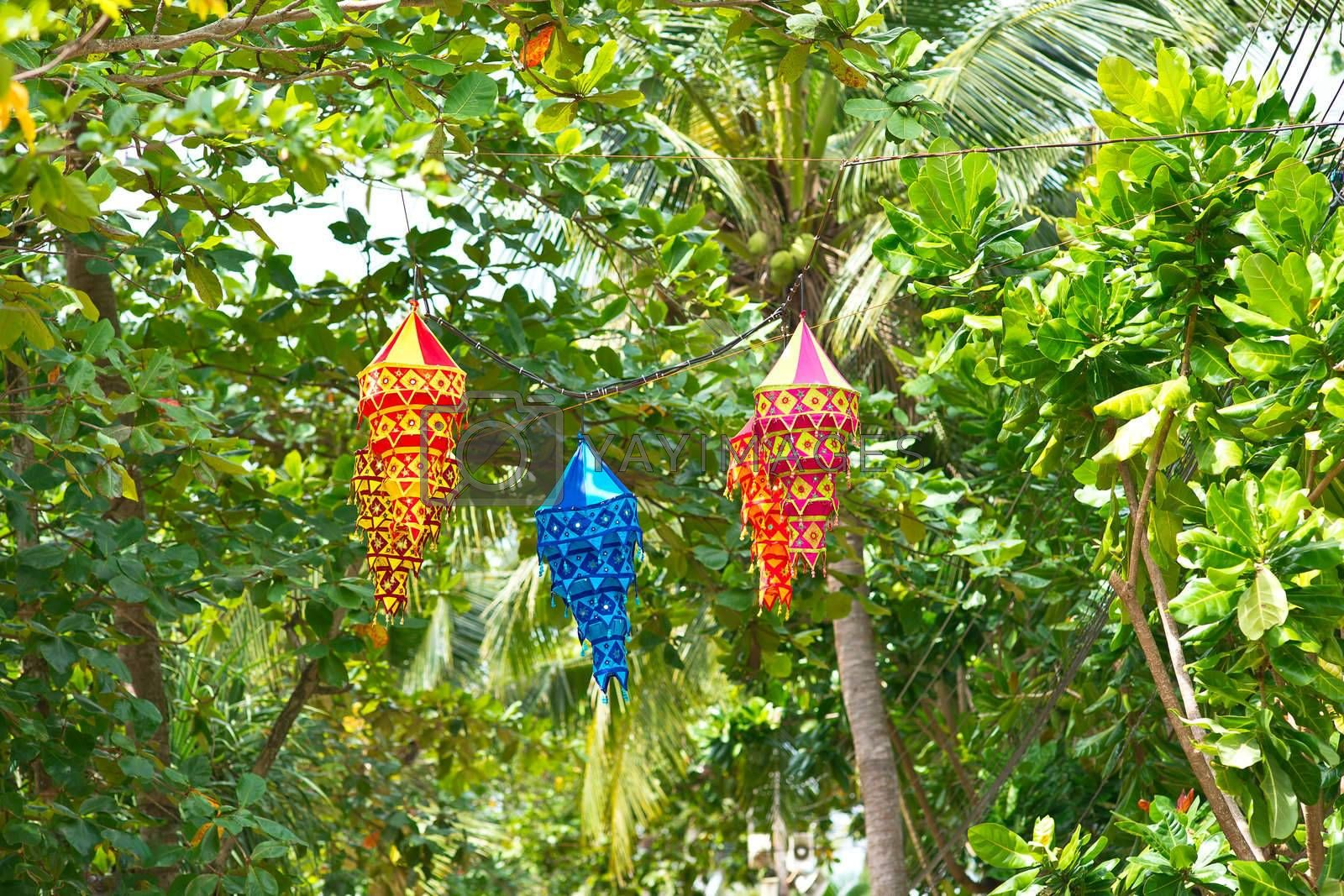 Colorful chinese lanterns hanging on a tree