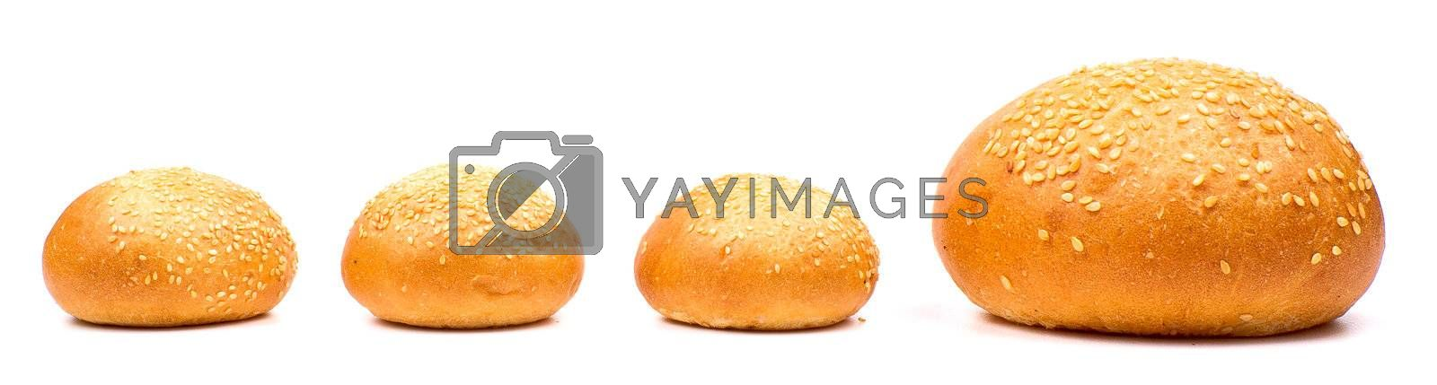 Row of buns with sesame isolated on the white background