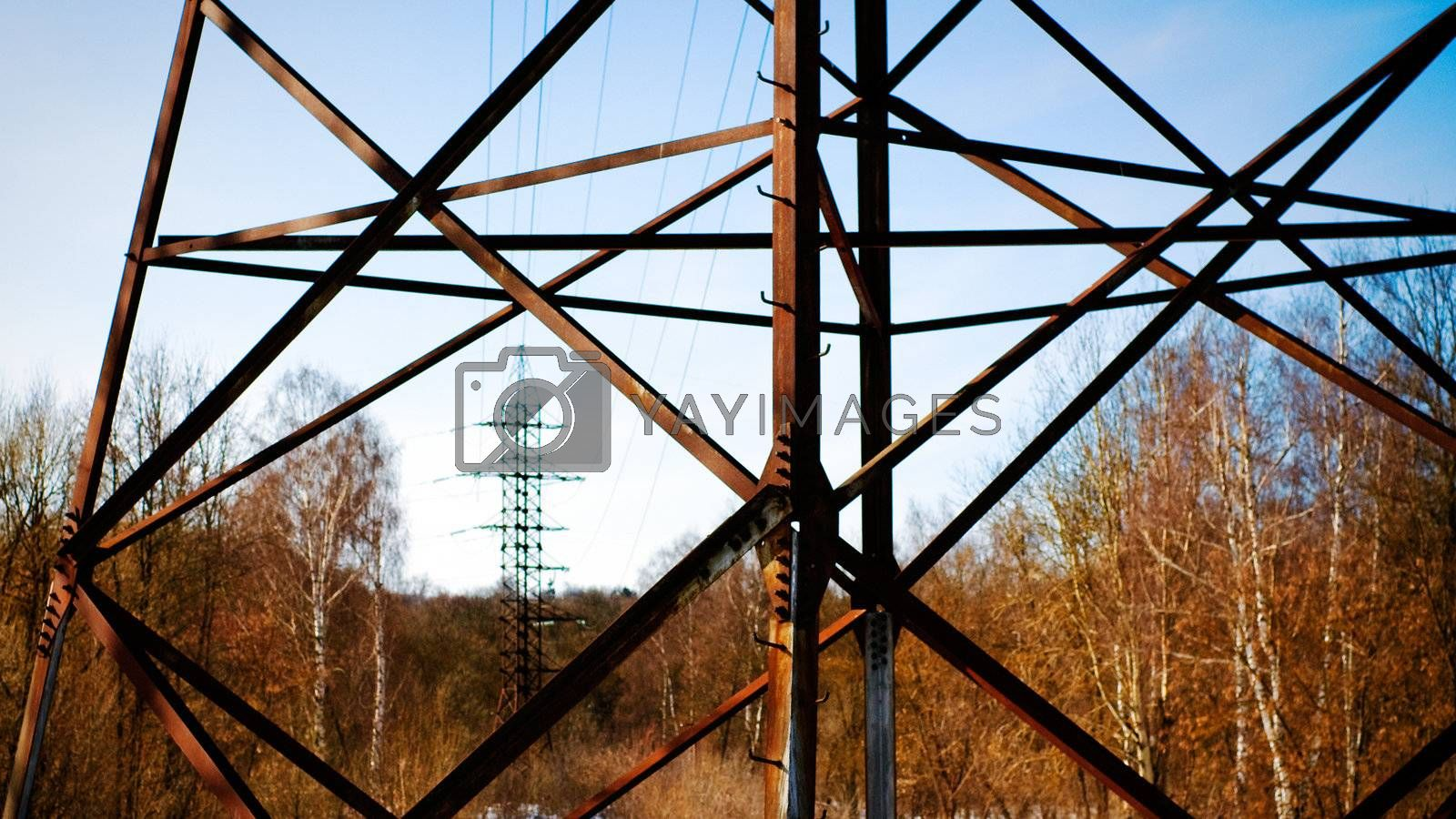 Electric tower in the forest