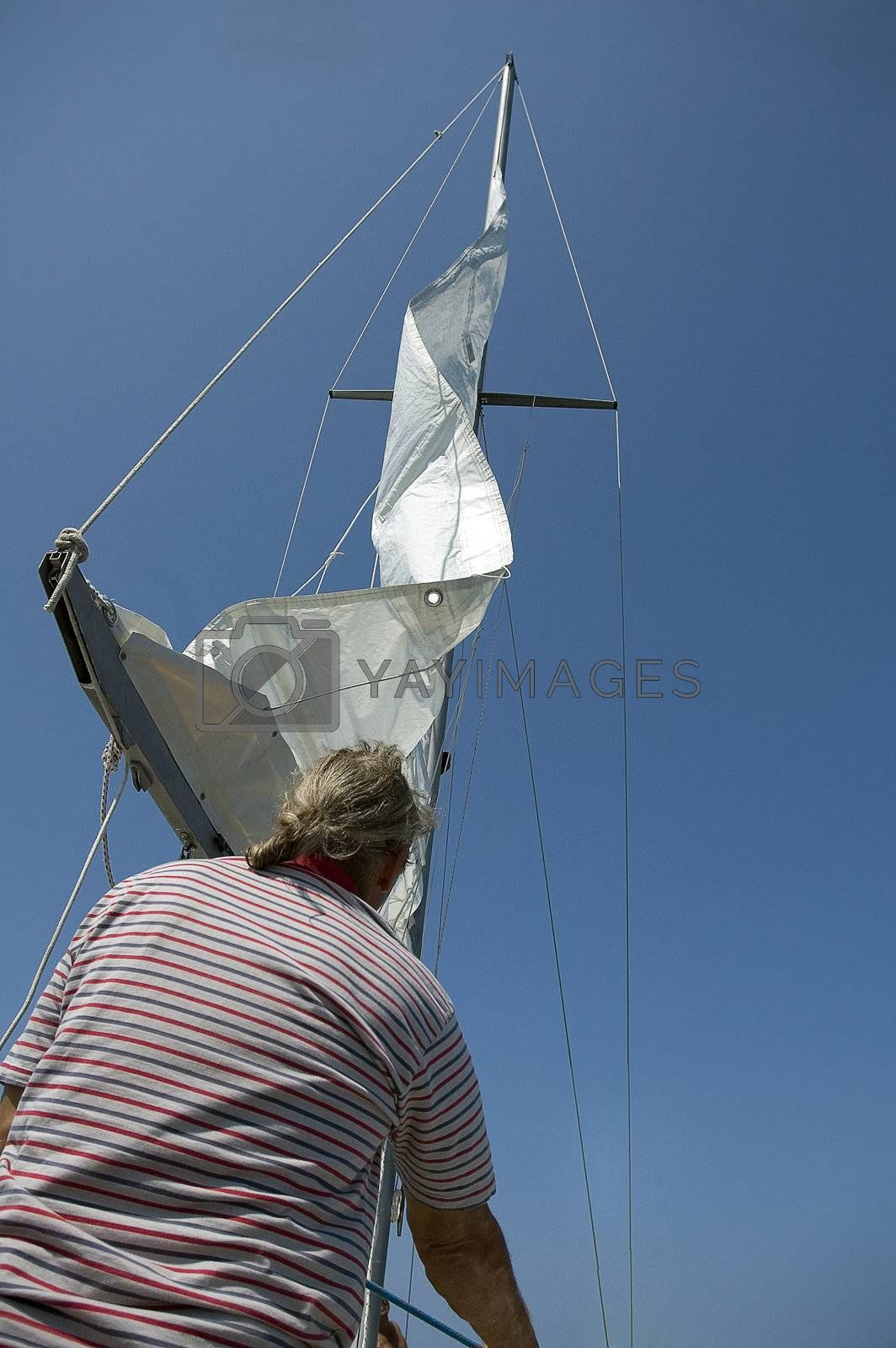 skypper that raises its sails
