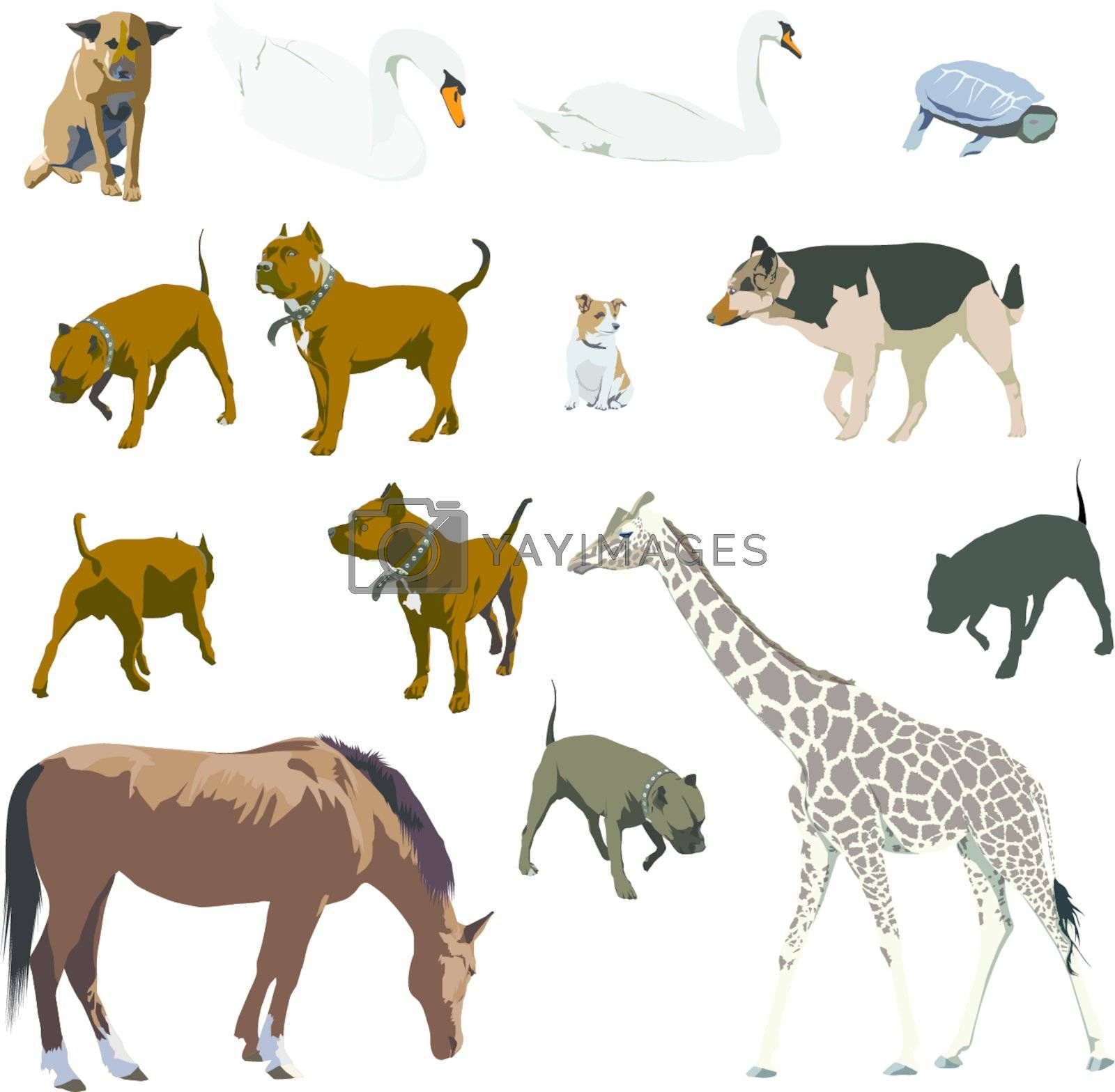 Set of animal vector illustratins. Horse, dog, giraffe, turtle, swan