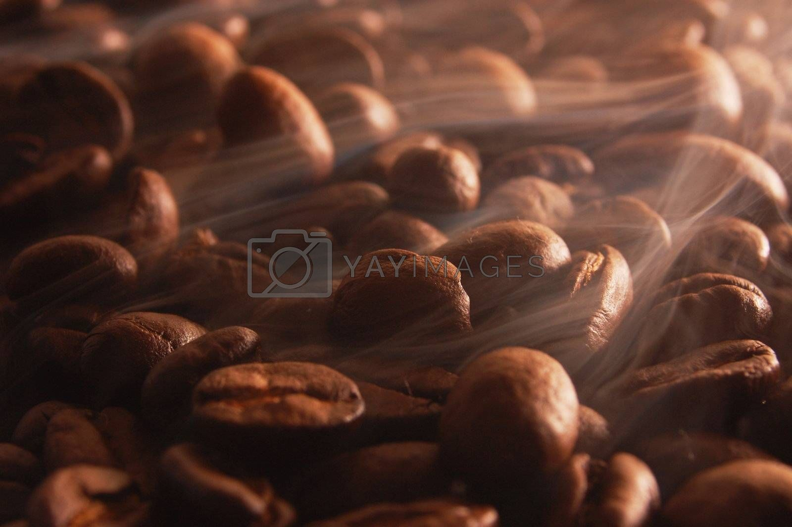 roasting coffee beans with smoke and steam