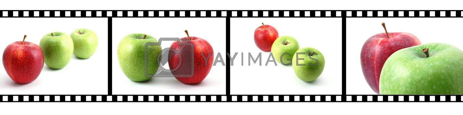 isolated fruits collection with a film strip
