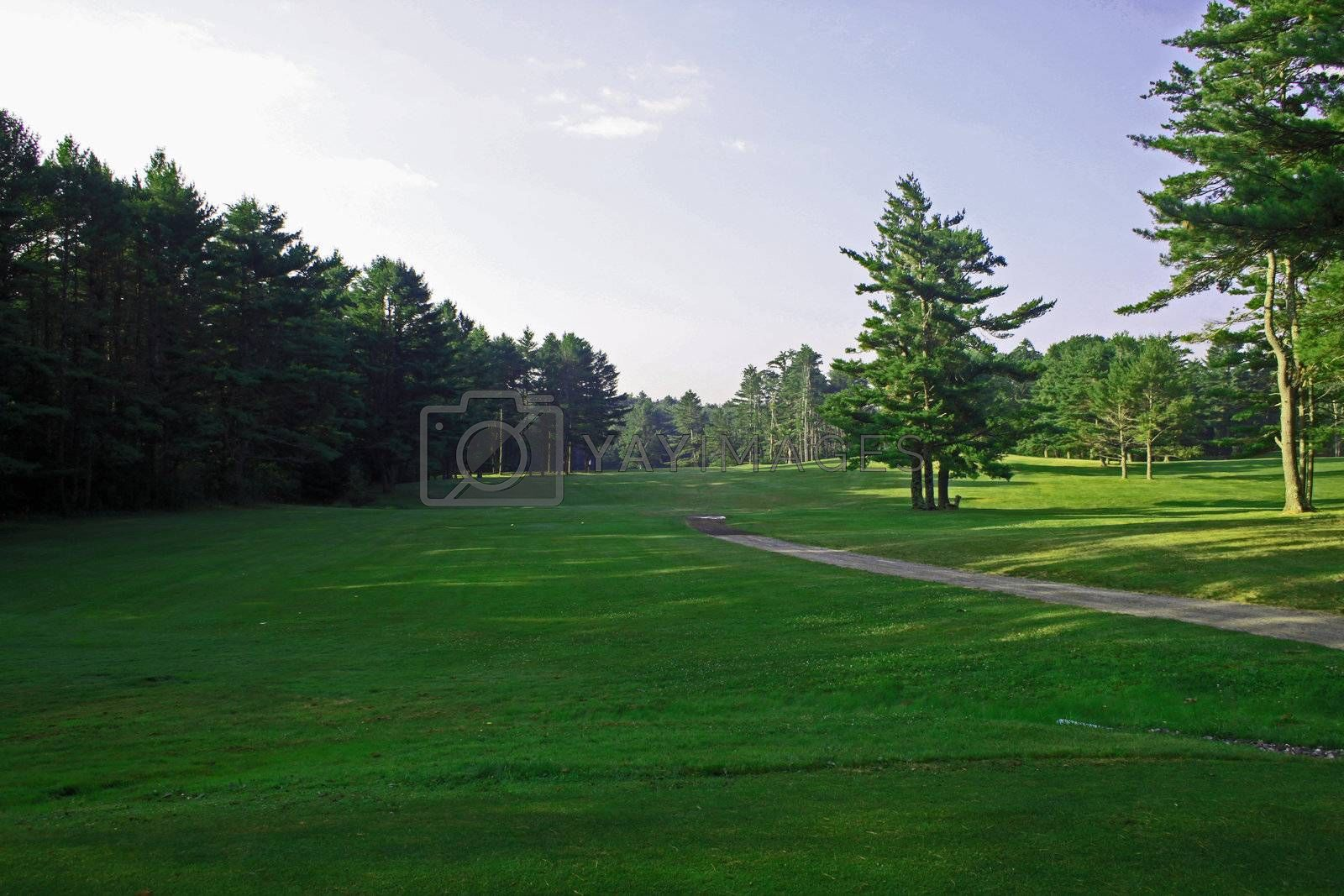 View from golf tee to the driving area