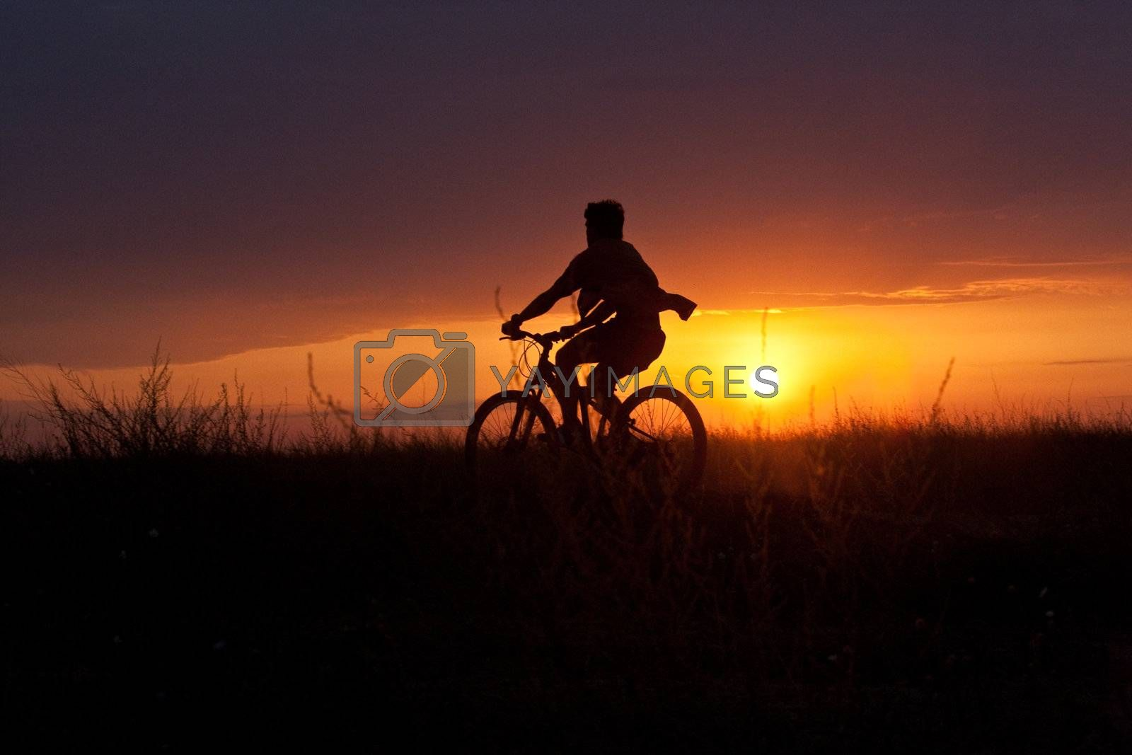 people series: summer cyclist on the subset light