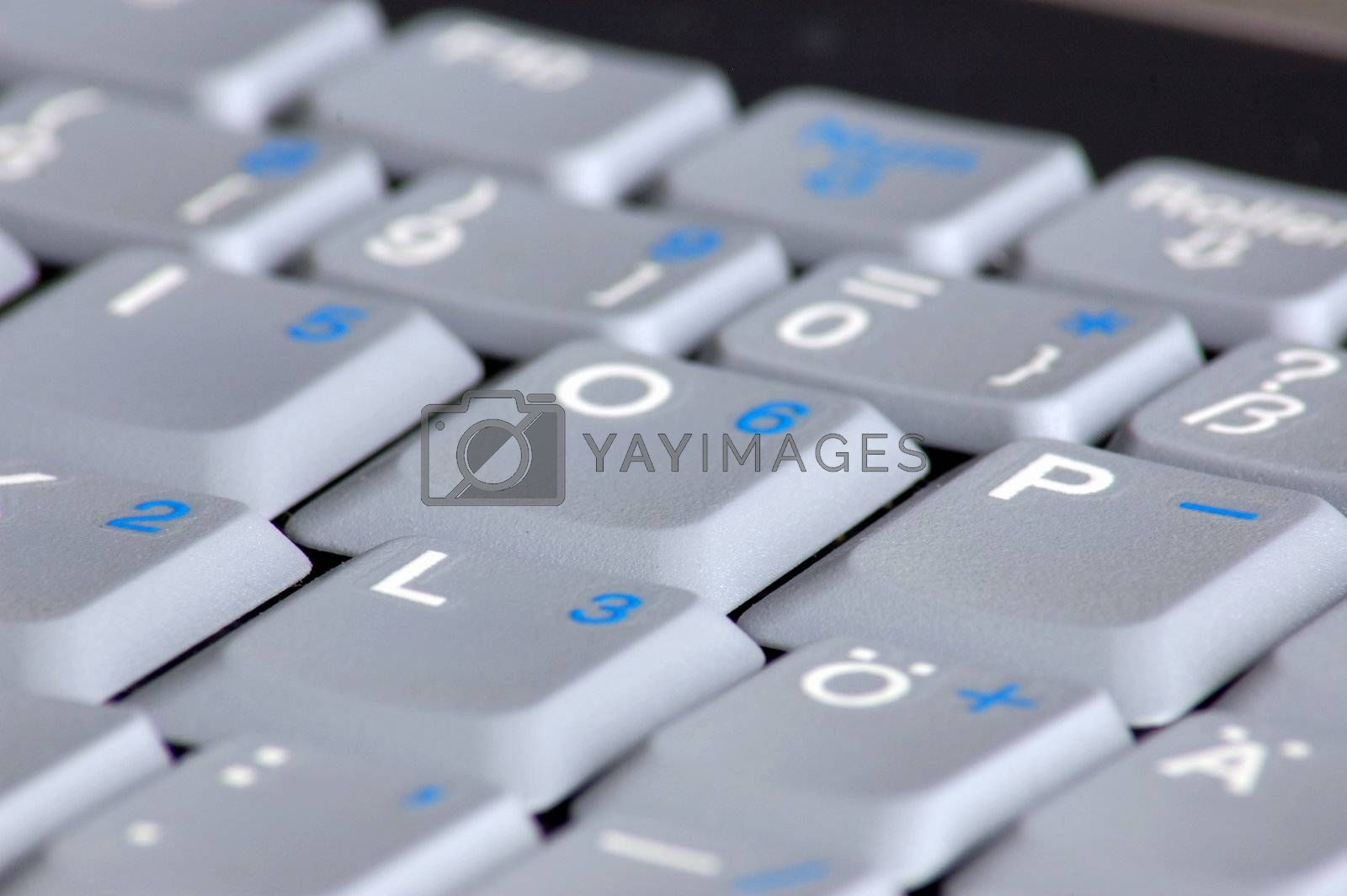 gray keyboard of a business laptop computer