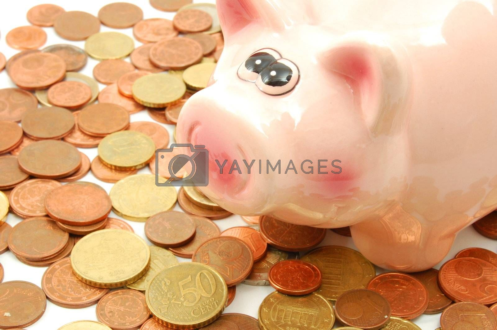 piggy bank and money showing business investment concept