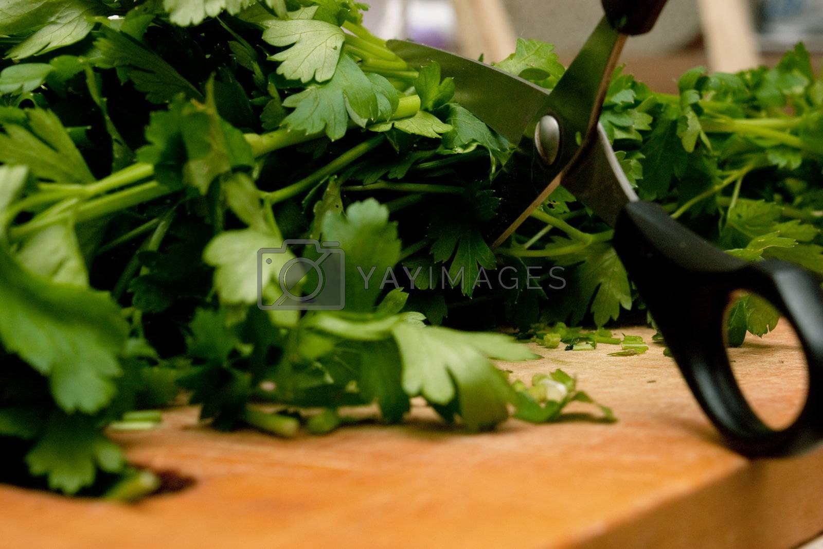 Parsley on a cutting board