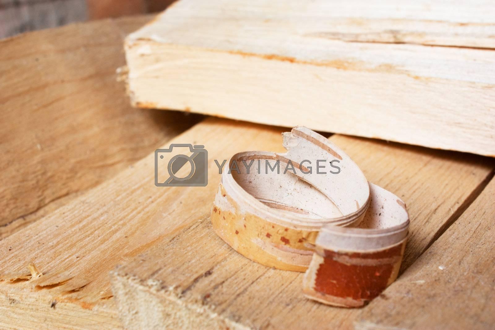 Curled upper bark shaving on birch firewoods