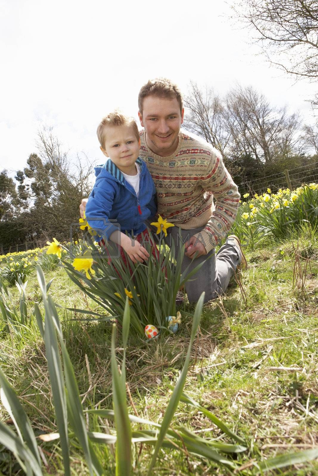 Father And Son On Easter Egg Hunt In Daffodil Field by OMG Images