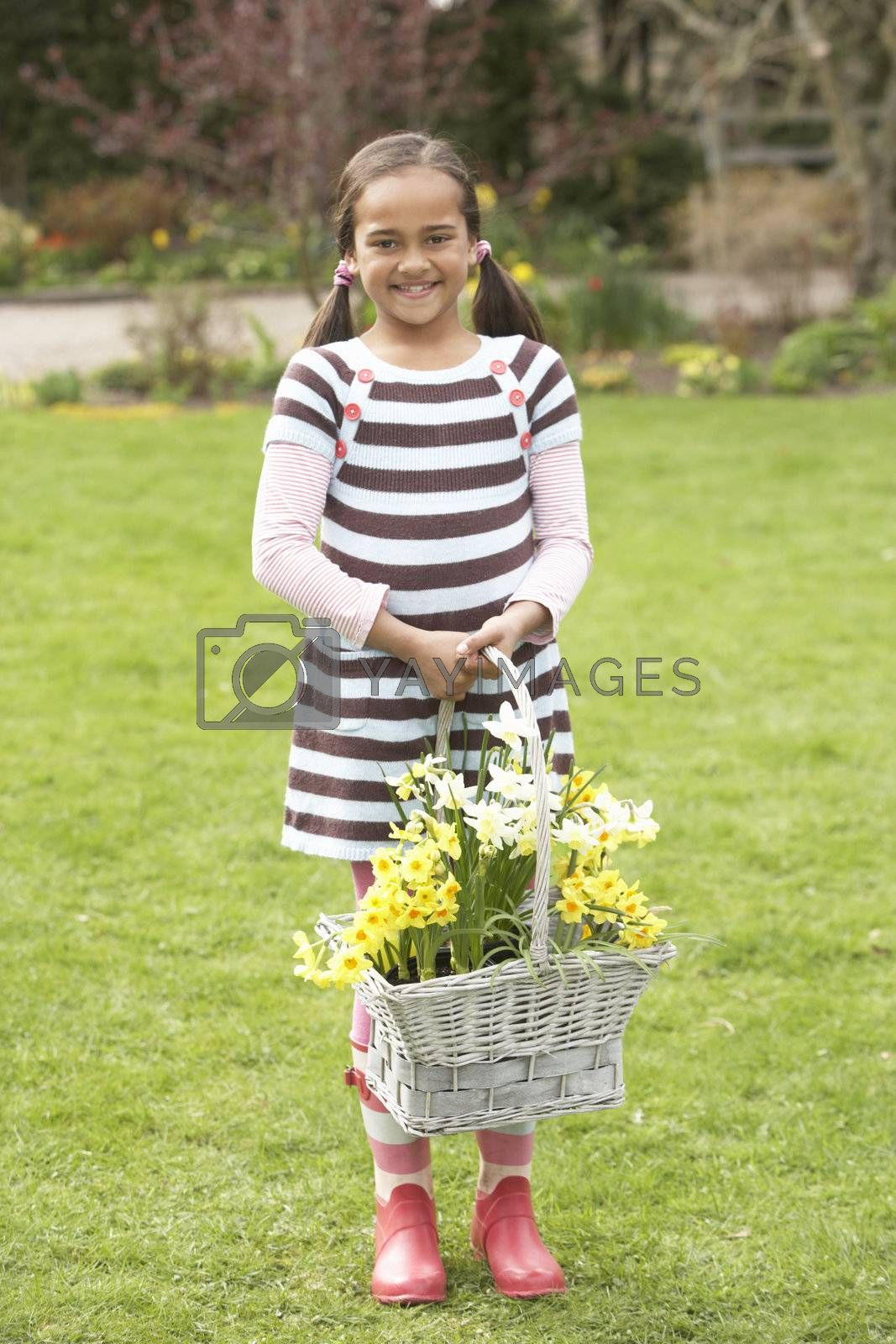 Royalty free image of Girl Holding Basket Of Daffodils In Garden by omg_images
