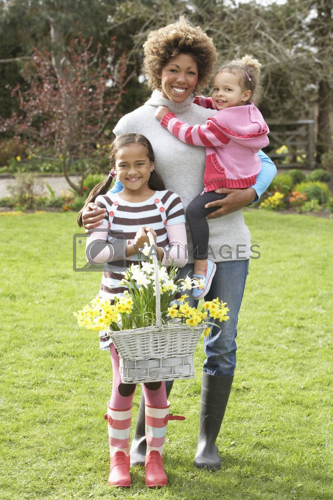 Royalty free image of Mother And Children Holding Basket Of Daffodils In Garden by omg_images