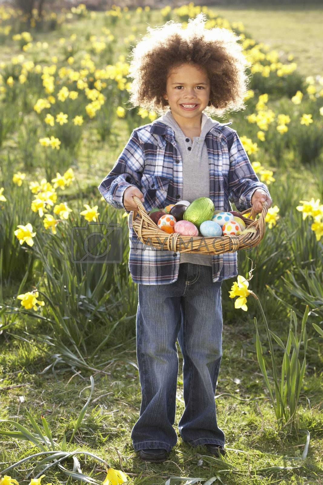 Royalty free image of Boy On Easter Egg Hunt In Daffodil Field by omg_images
