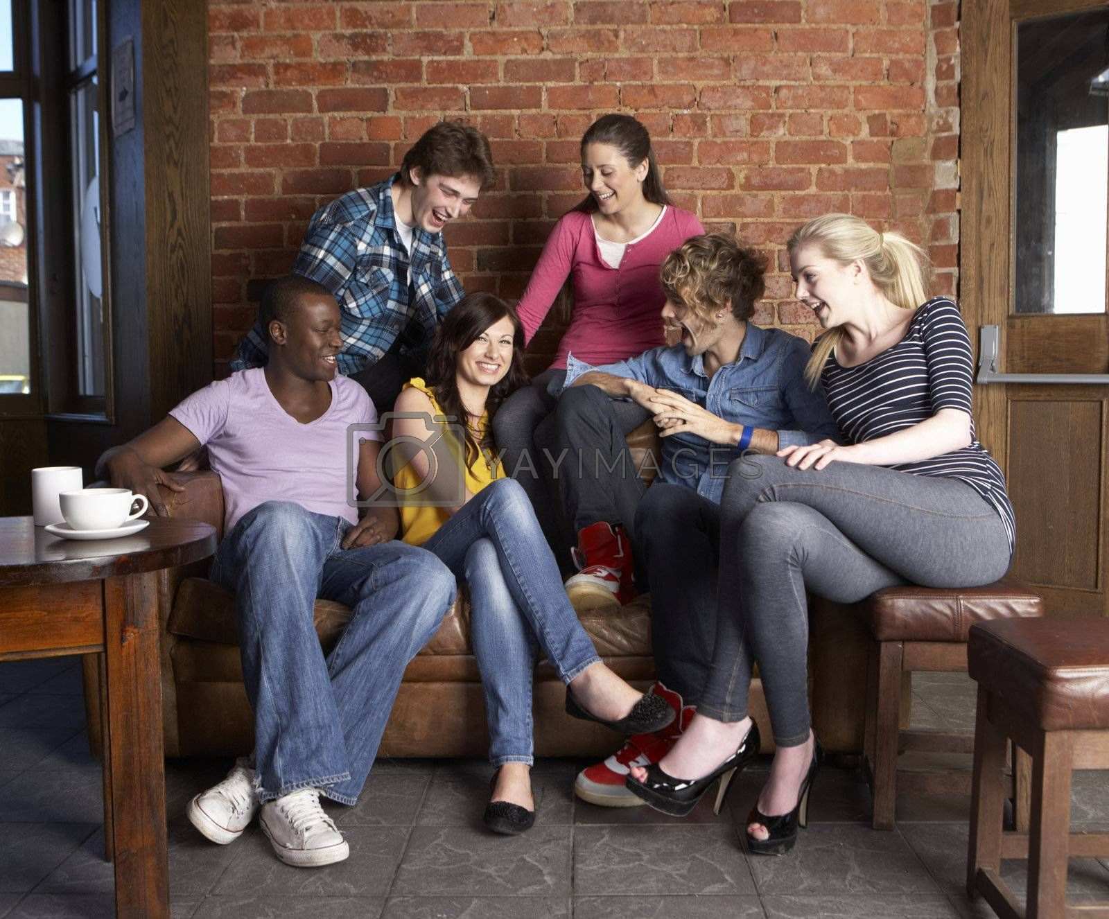 Young friends in caf�