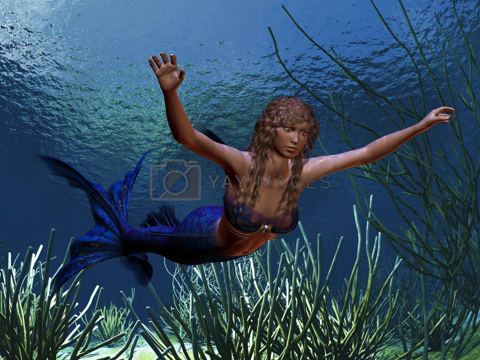 A beautiful blue tailed mermaid swims along a coral reef.