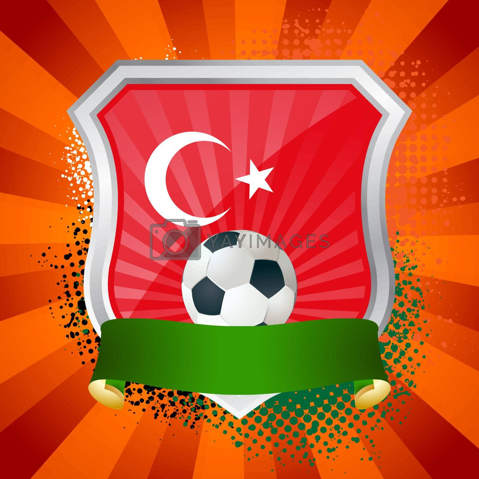 Shield with flag of  Turkey by Petrov_Vladimir