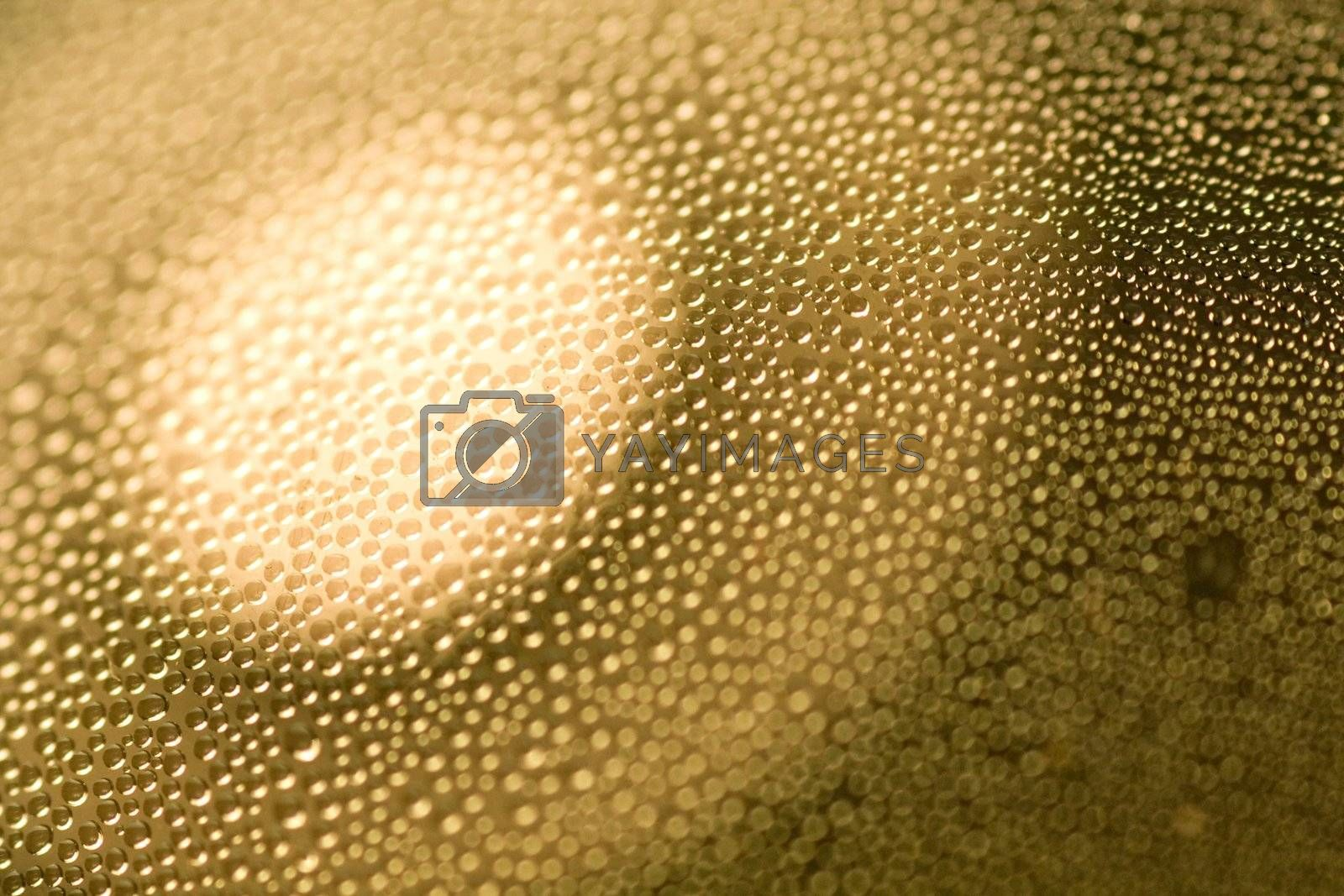 Close up abstract of many condensed drops of water with a focus of light circle.