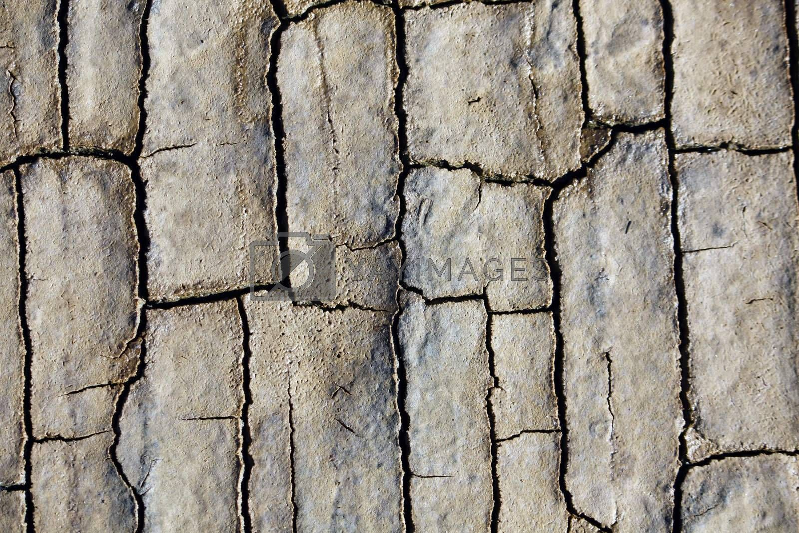 Close texture view of some dried out ground with many cracks.