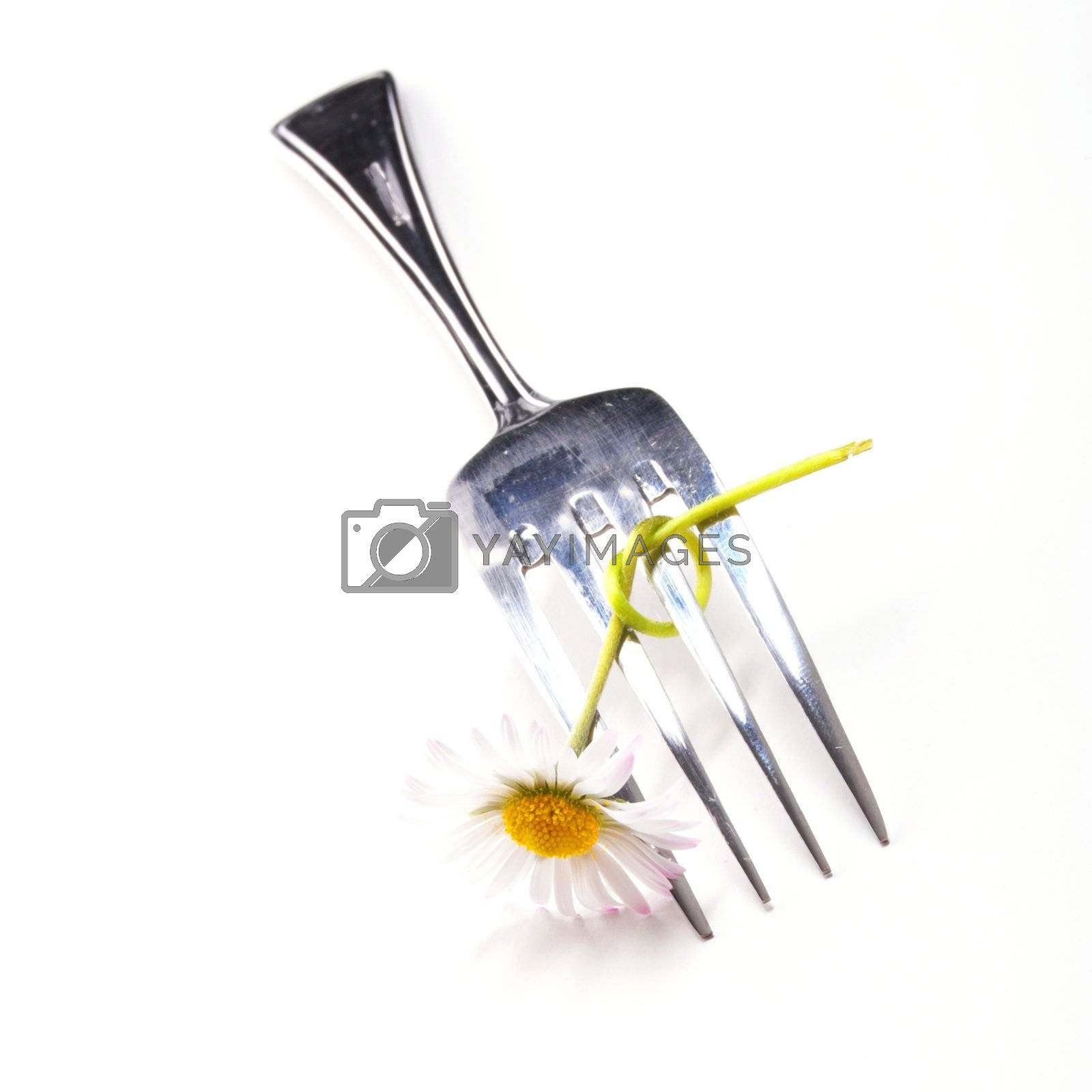 Royalty free image of flower and fork by gunnar3000