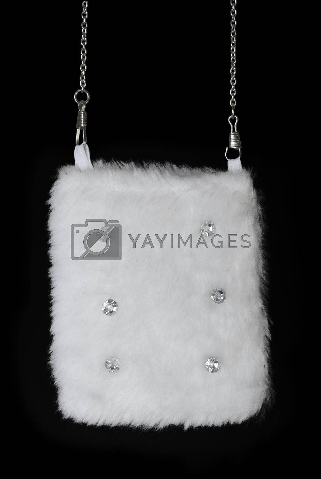 Royalty free image of Fur pouch | Isolated by zakaz