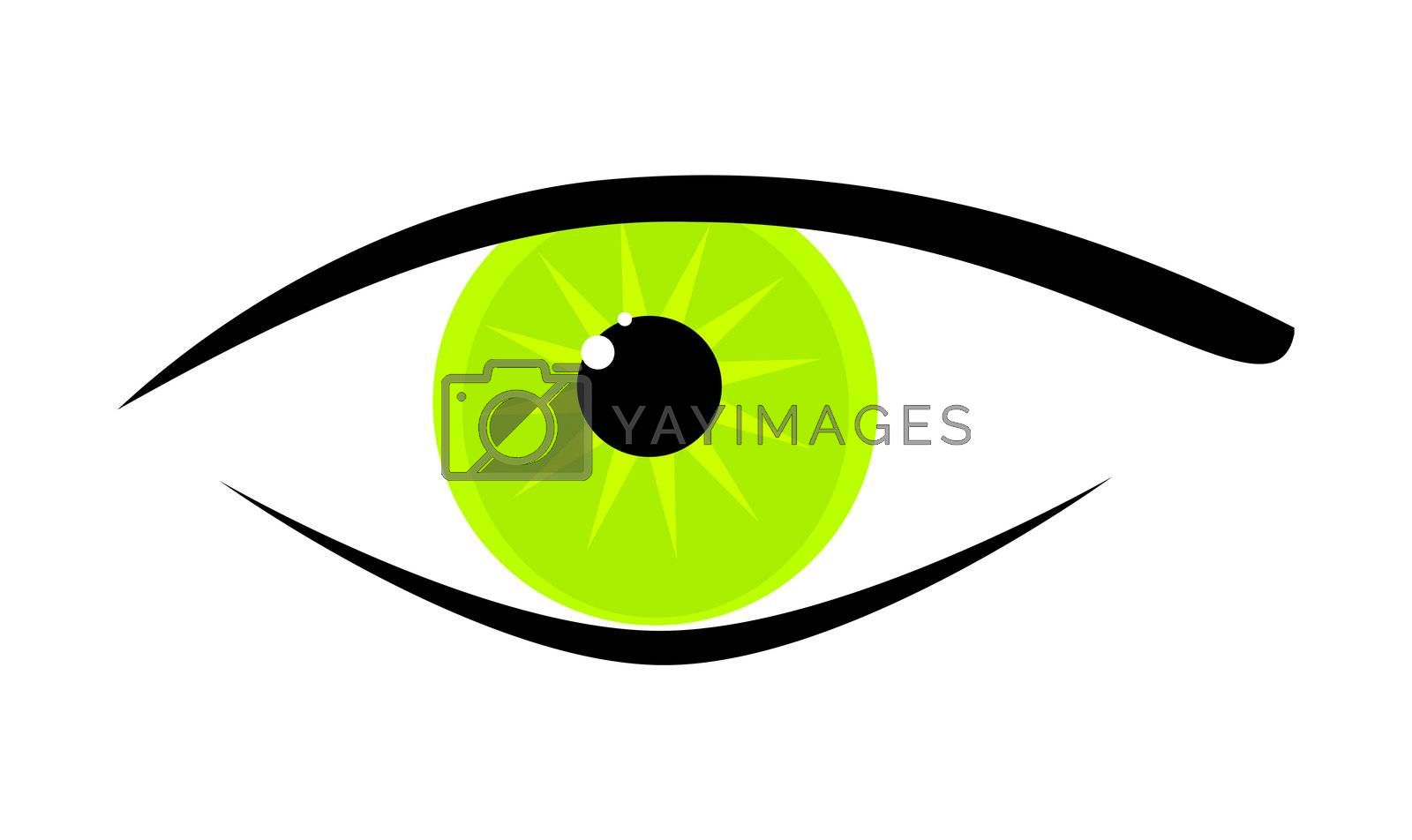 Royalty free image of green eye by magann