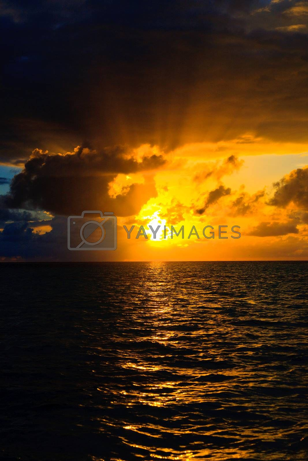 Royalty free image of Maldivian Sunset by anobis