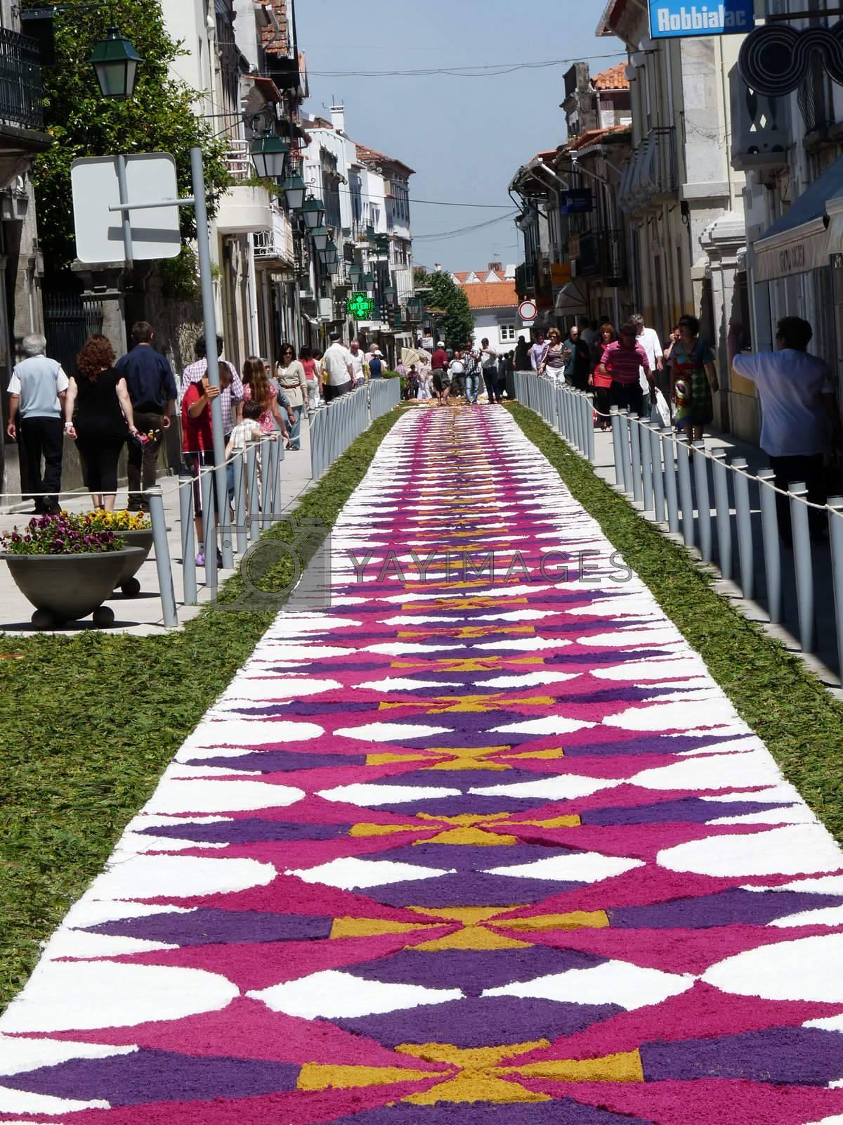 Caminha Festival by afonsoasneves