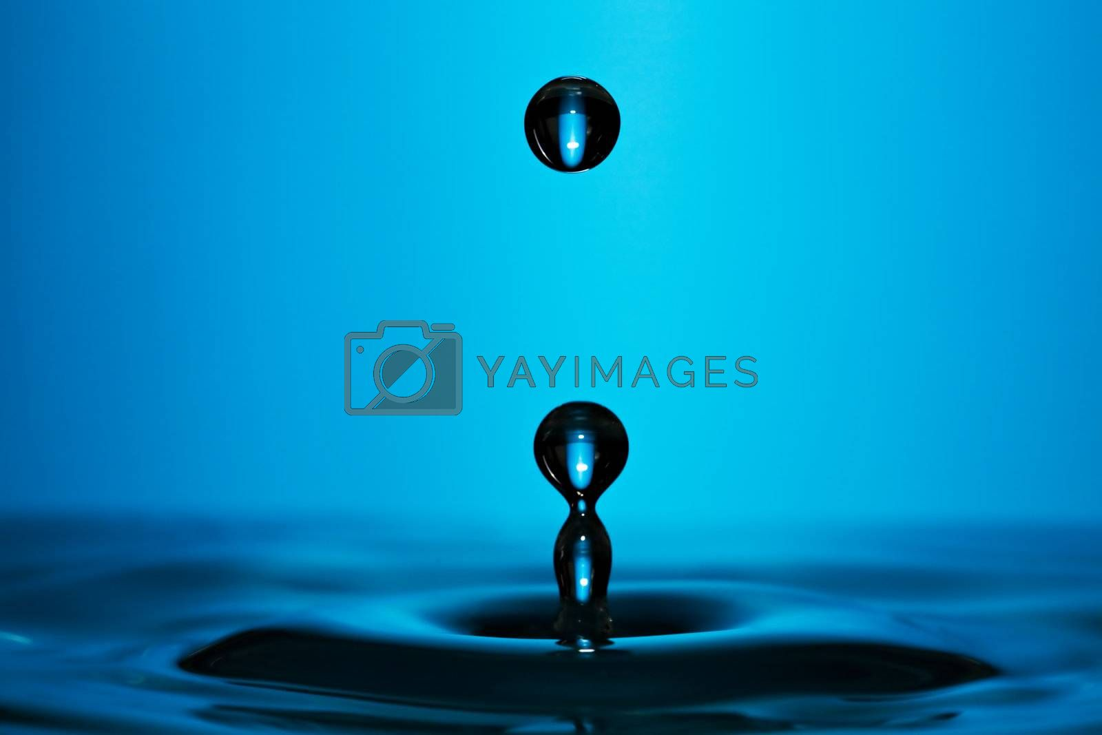 Macro photo of a perfect water drop on blue background.