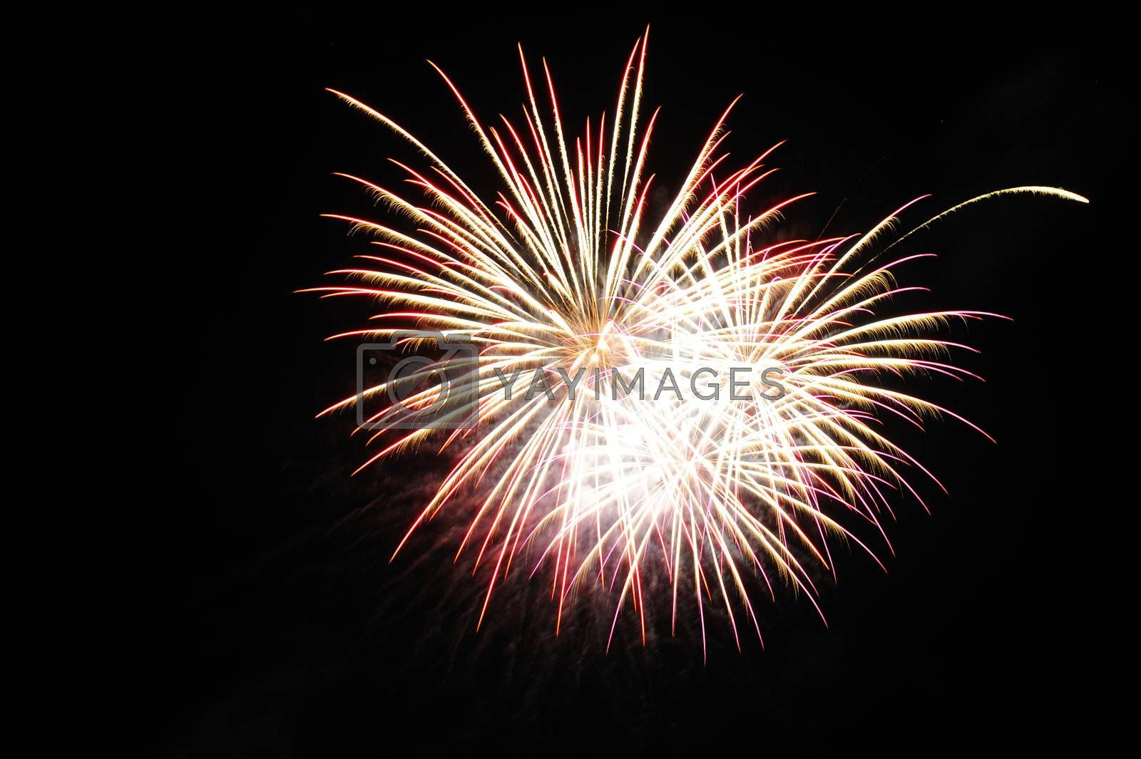 Firework burst in the night sky. Space for text in the sky.