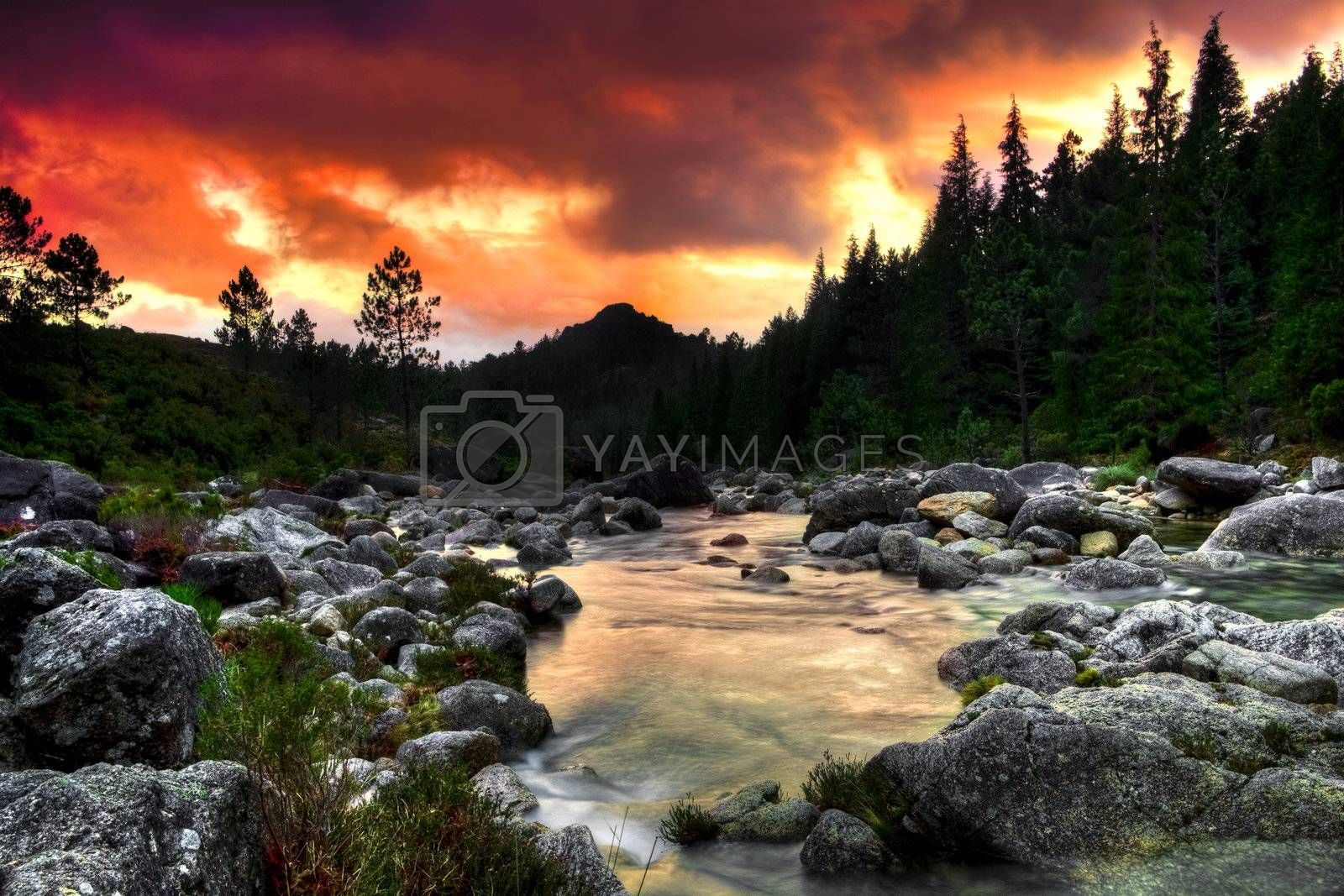 Royalty free image of Mountain River  by Iko