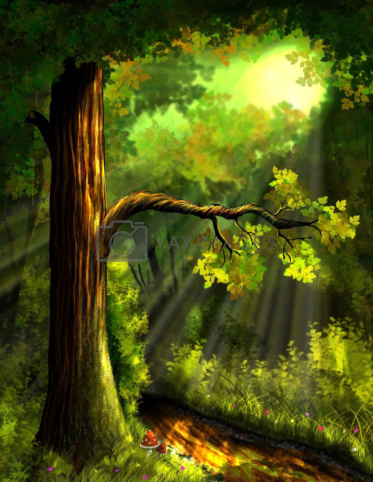 illustration, a trail in the forest to sunlight