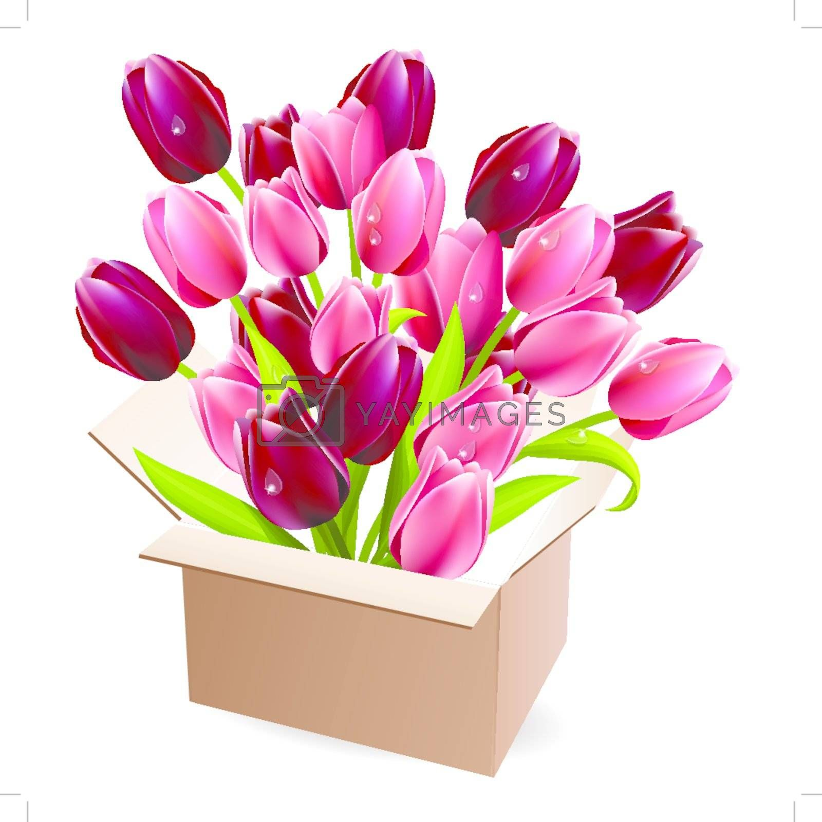 Open box full of red and purple tulips