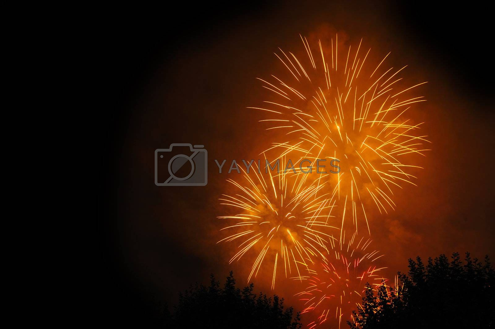 Firework bursts in the night sky, over trees (just visible). Space for text in the dark of the night sky.