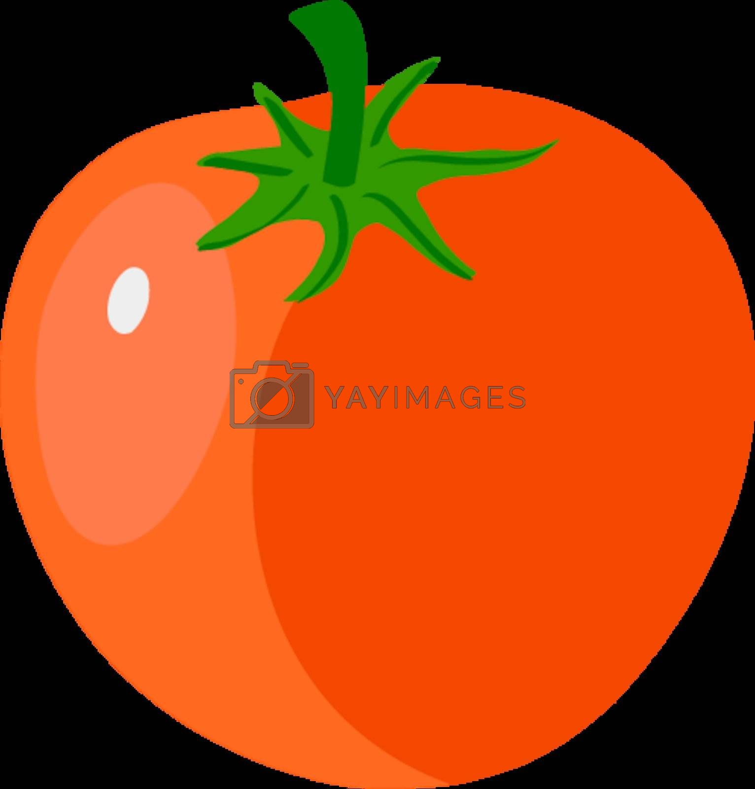 Royalty free image of tomato by Perysty