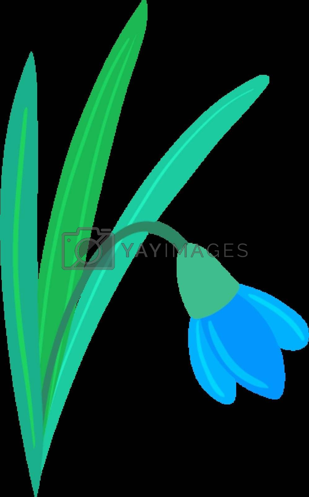 Royalty free image of Snowdrop by Perysty