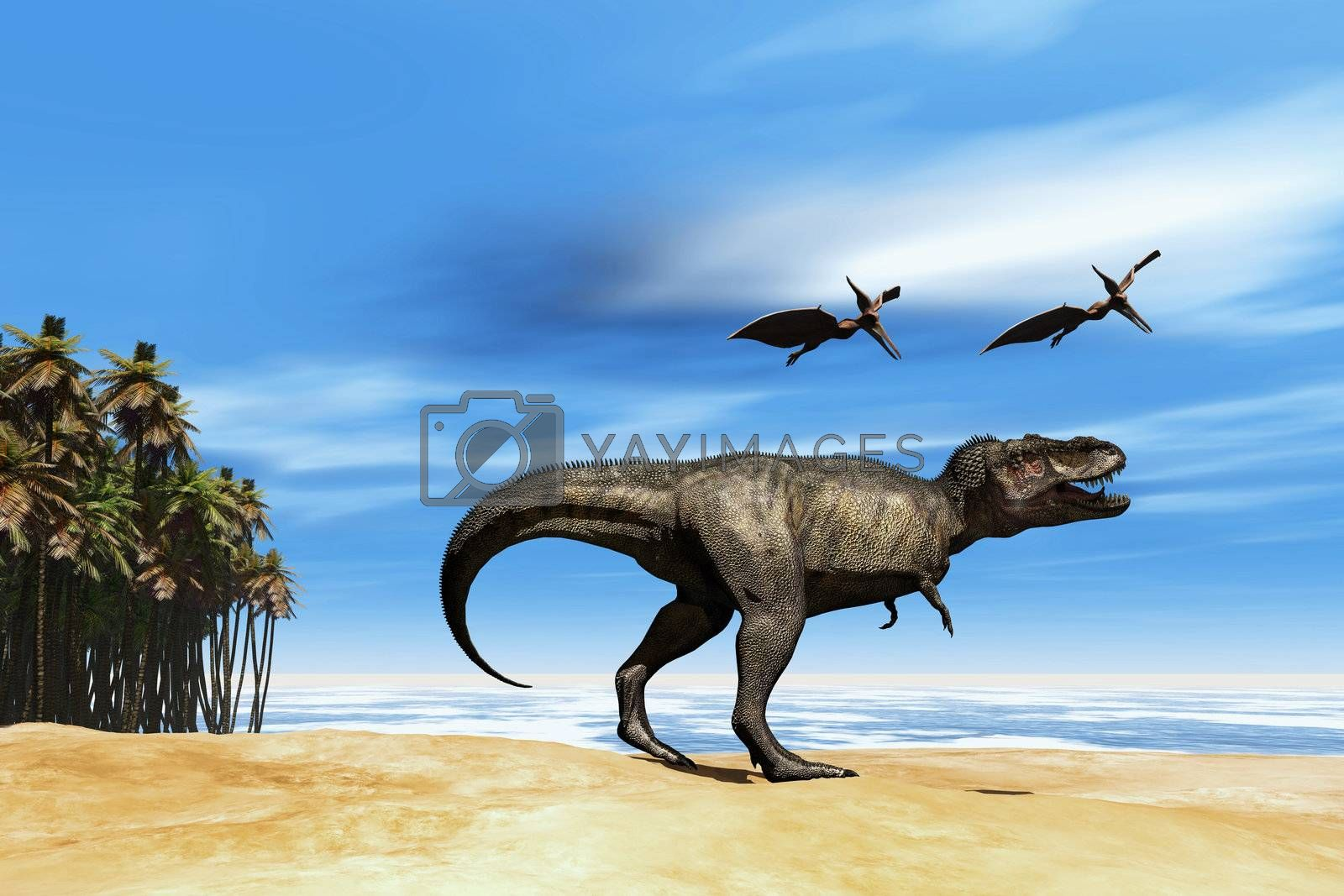 Two Pterodactyl flying dinosaurs fly over beastly Tyrannosaurus Rex at the seashore in prehistoric times.