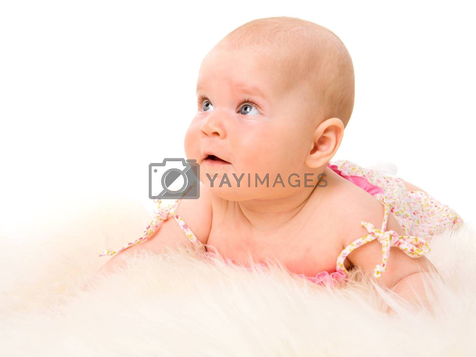 Six month Baby looking up isolated on white