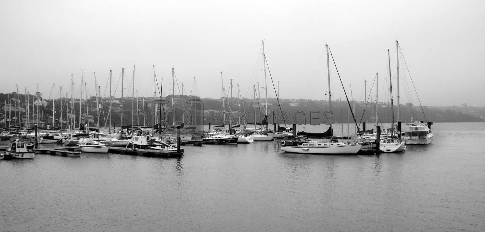 a fleet of boats moored up