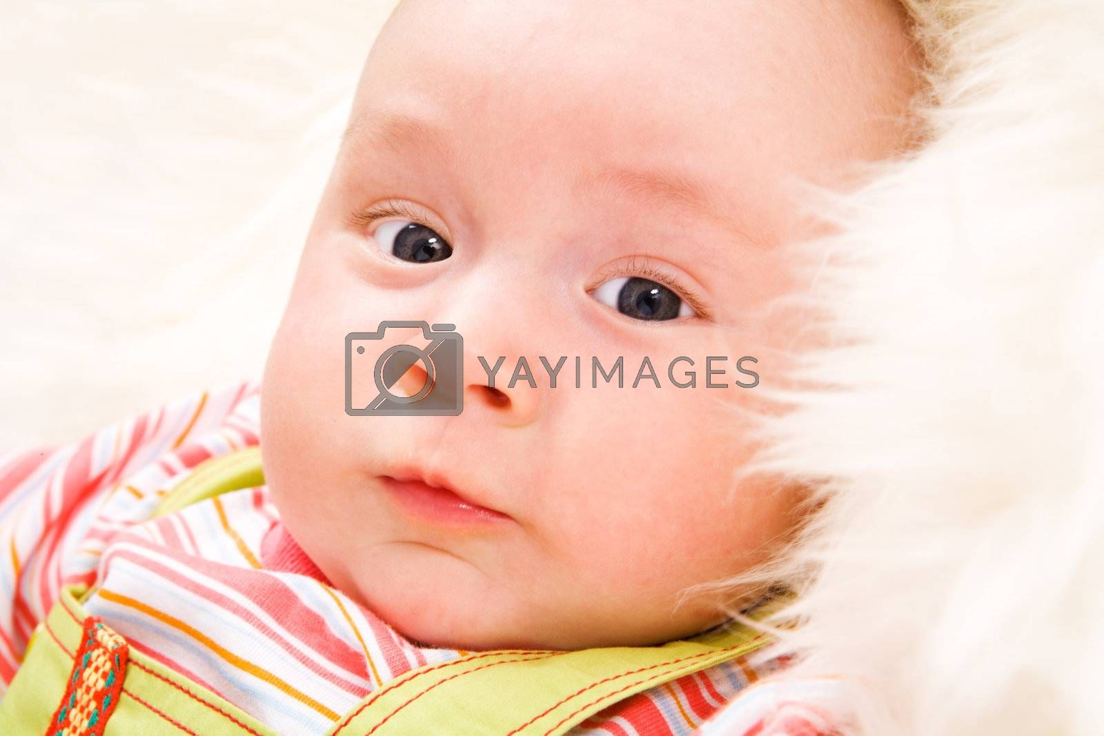 Close-up portrait of Beautiful baby lying on fur