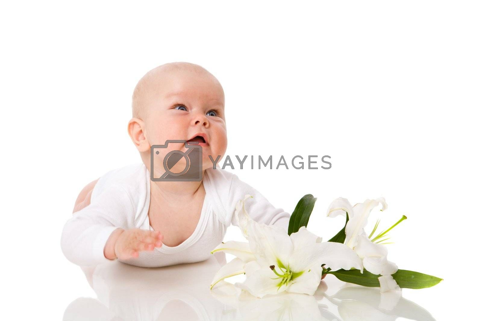 Baby lying on floor near white lily looking up isolated
