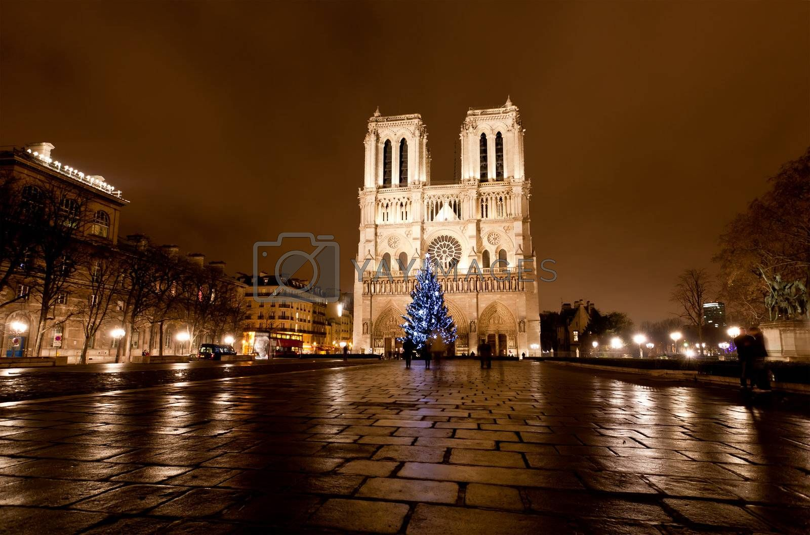 The famous Notre Dame at night in Paris, France