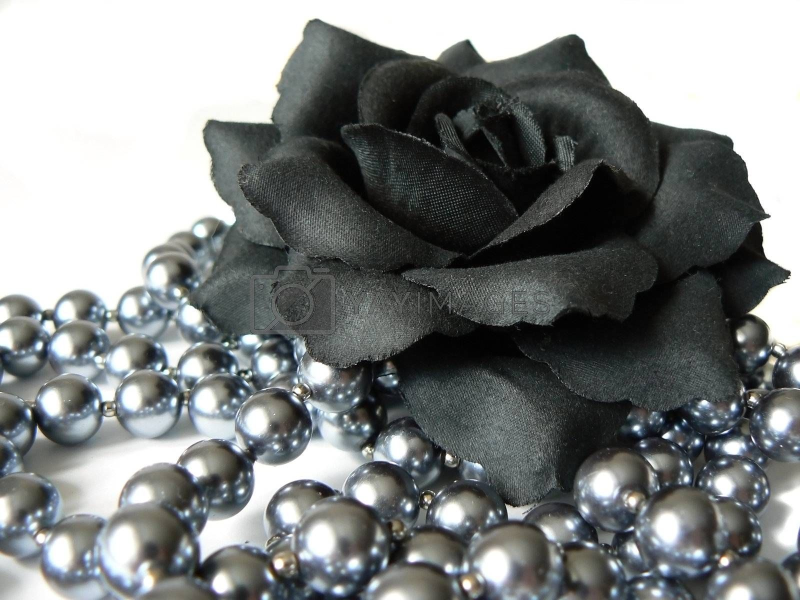 Black rose and beads isolated on white