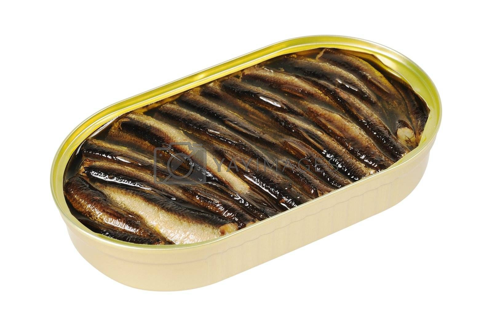 Opened metal can  with  fish. Isolated on white.