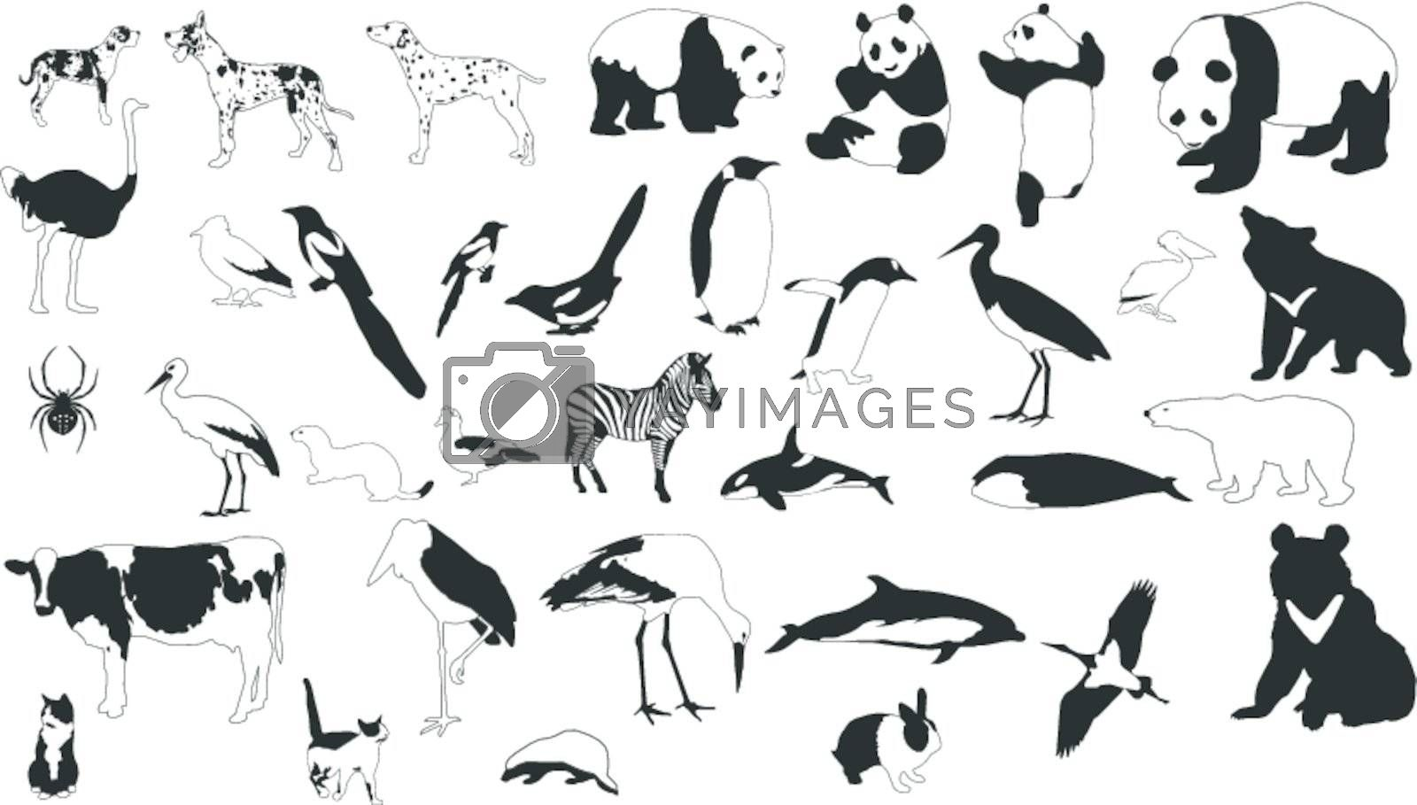 Collection of vector silhouettes of black-and-white animals