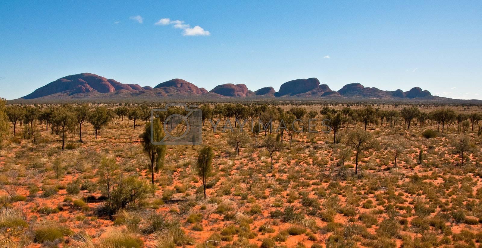 panoramic view of Kata Tjuta, australian red center