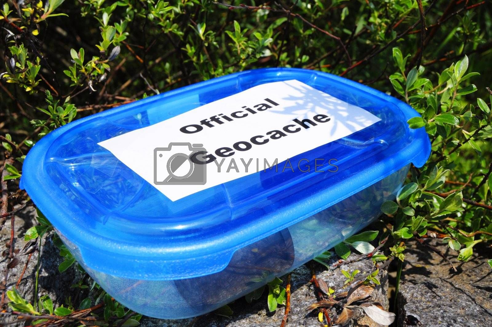 geocaching concept with blue geocache box showing outdoor sports concept