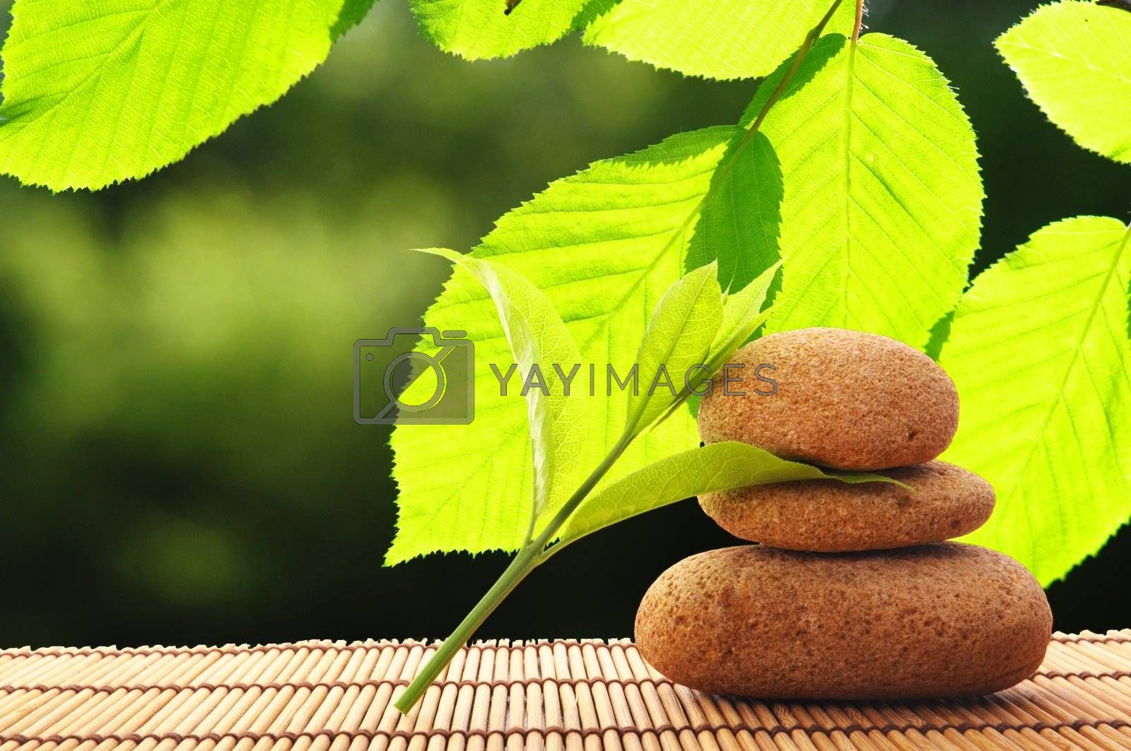 zen stack or tower with green summer leaf showing spa or wellness